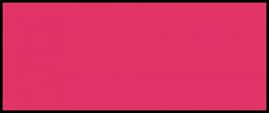 Logo Sdui